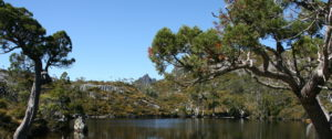 wombat-pool-in-cradle-mountain-tasmania-1357020-1279x852